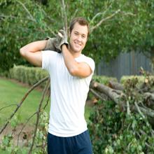 Tree Removal Service'