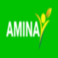 Amina International LLC Logo