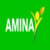 Amina International LLC