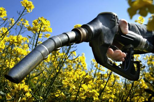 Biofuels (Bioethanol and Biodiesel) Market'