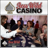 Aces Wild Casino Party