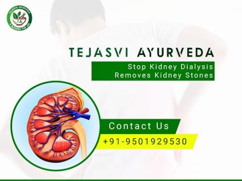Ayurvedic Kidney Treatment in Chandigarh'