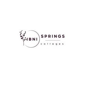 Company Logo For IBNI Spring'
