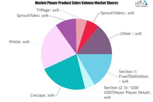 Video Marketing Services Market'