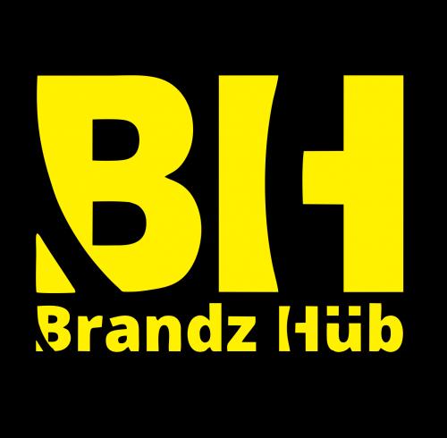 Company Logo For BrandzHub'