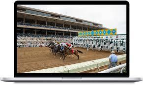 Horse Racing Software'