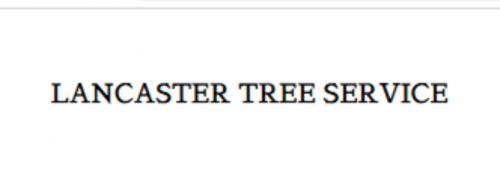 Company Logo For Lancaster Tree Service'
