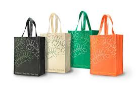 Reusable Shopping Bag Market to See Massive Growth by 2026 :'