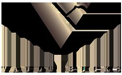 Company Logo For VAULT BUCKS'