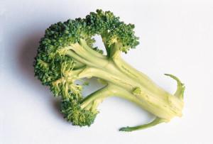 how to start a vegetable garden'
