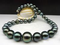 pearl 1'