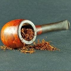 Premium Cigars'
