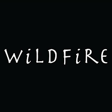 Company Logo For High Heels | Wildfire Shoes'