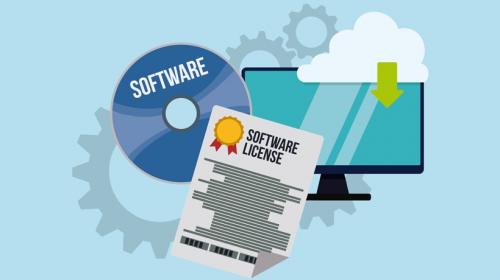Software Licensing'