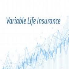 Variable life Insurance Market Next Big Thing | Major Giants'