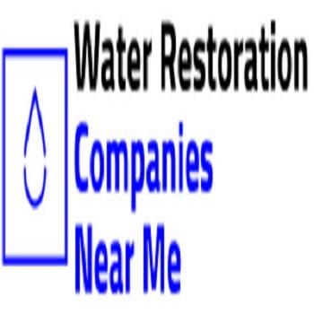 Company Logo For Basement Water Pump Brooklyn'