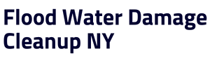Company Logo For Water Cleanup Long Island'