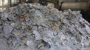 Waste Paper and Pulp Recycling Market'