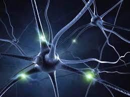 Neuroprotection Market'