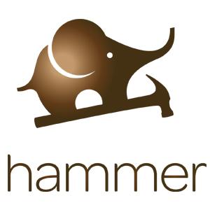 Hammer'