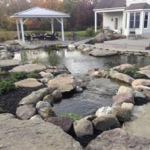 Pond Maintenance'