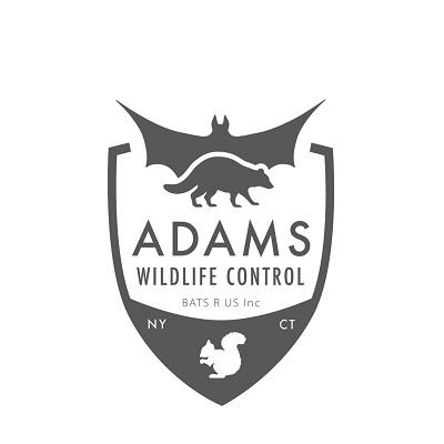 Company Logo For Adams Wildlife Control'