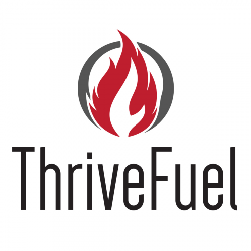 Company Logo For ThriveFuel Digital Marketing'
