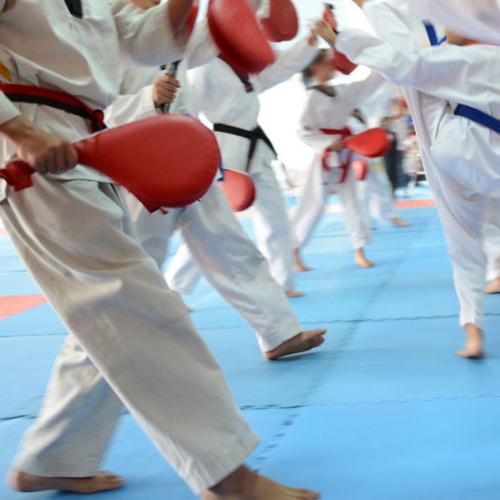 Karate Classes'