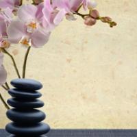 La Luna Natural Therapeutics Logo
