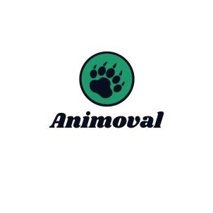 Company Logo For Animoval'