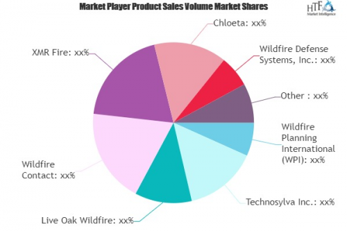 Wildfire Consulting Market'