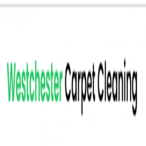 Company Logo For Professional Rug Cleaning NYC'