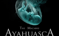 The Macabre AYAHUASCA Hammer Experience