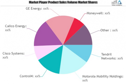 Smart Grid Home Area Network (HAN) Market'