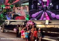 Party Bus and Limo Service New York Logo