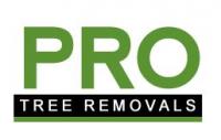Pro Tree Removal Brisbane Logo