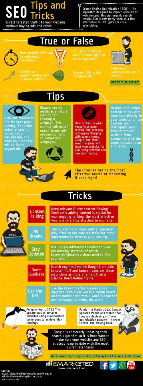 SEO Infographic'
