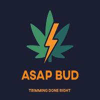 ASAP Bud Logo