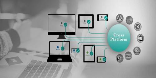 Cross-Platform Developer Services Market'