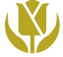 Golden Tulip China Logo