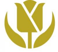Golden Tulip China Logo