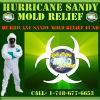 NYC mold removal for Hurricane Sandy'