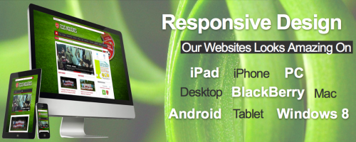 Toronto Website Design'