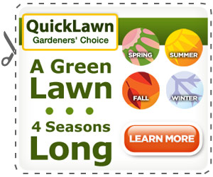 quicklawn grass seed'