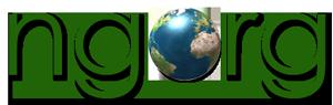Company Logo For NGORG Technologies'