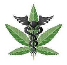 Investing in Marijuana'