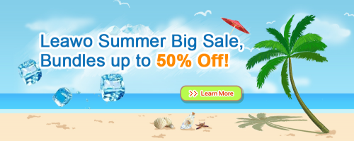 Leawo Summer Big Sale 2013'