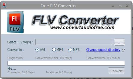 flv converter'