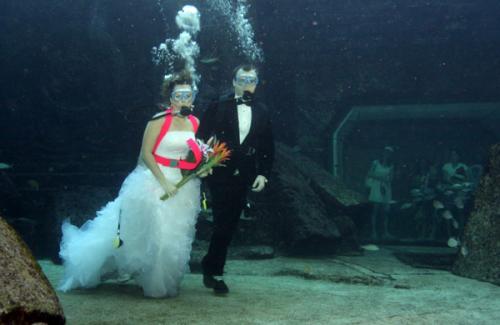 Universal Life Church Underwater Weddings'
