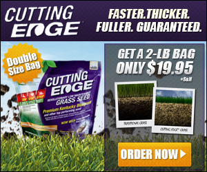 Cutting Edge Grass Seed As Seen on TV Canada'